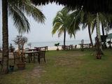 столики под пальмами / Малайзия