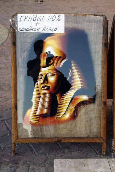 Сувенир на память / Фото из Египта