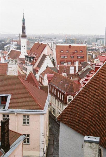 Крыши и шпили / Фото из Эстонии