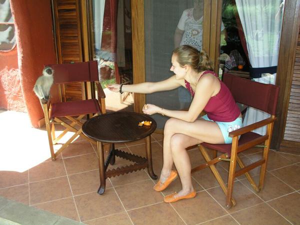 Мы подкармливали обезьянок мандаринами / Фото из Кении