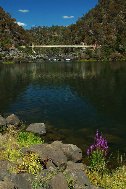 Alexandra Suspension Bridge / Фото из Австралии