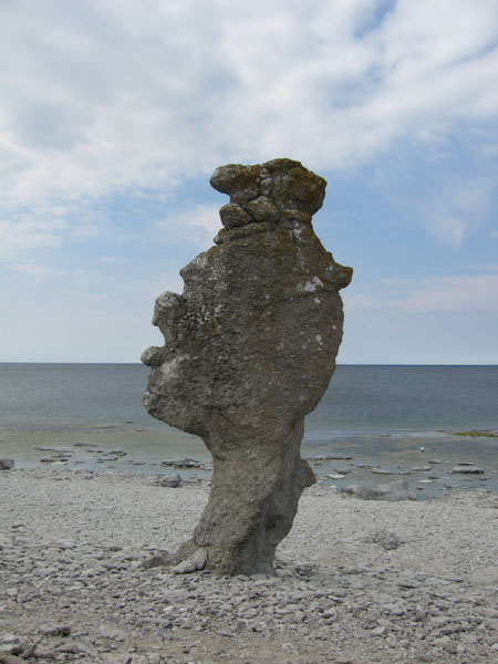 Одинокий раукар / Фото из Швеции