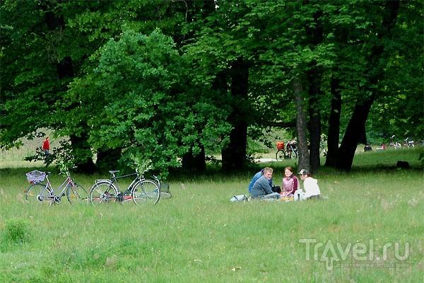 Отдыхающие горожане / Фото из Германии