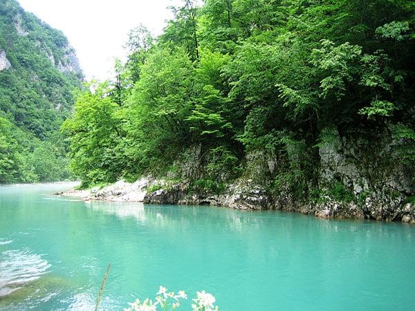 Река Тара / Фото из Черногории