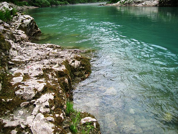 Прозрачная вода / Фото из Черногории