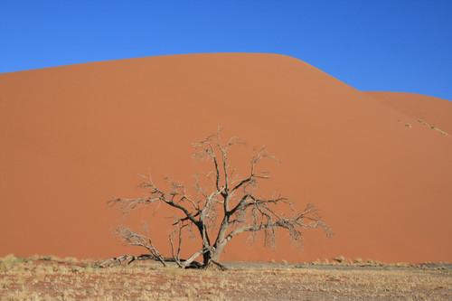 45 дюна / Намибия