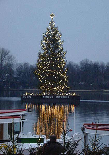 Рождественская ель / Фото из Германии