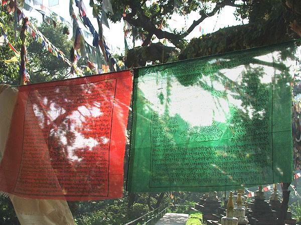 Молитвенные флаги / Фото из Непала