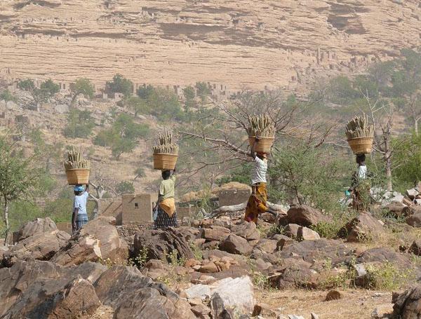 Женщины Страны догонов. Красиво идут! / Фото из Мали