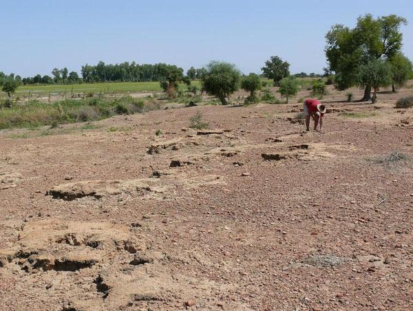 Дженне-Джено – самый древний город Западной Африки. Ему почти 2300 лет. Но от города остались только эти холмики / Фото из Мали