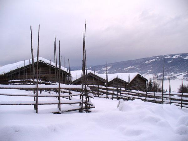 Старинные норвежские дома в парке-музее / Фото из Норвегии