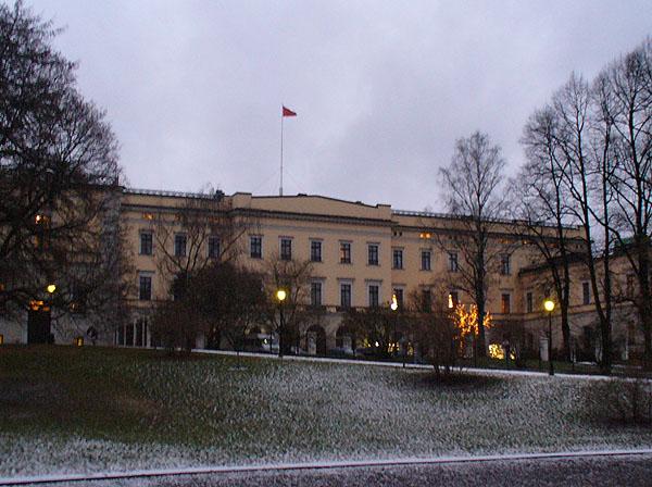 Королевский дворец  с черного хода / Фото из Норвегии