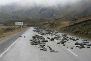 забастовки на дорогах / Боливия