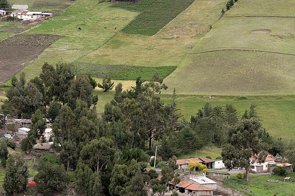 Гасиенда, вид с дороги / Фото из Эквадора
