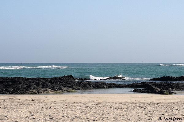 Бескрайный океан и песчаный берег Галапагосов / Фото из Эквадора