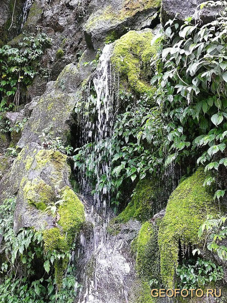 Маленький водопад, Бутан / Фото из Бутана