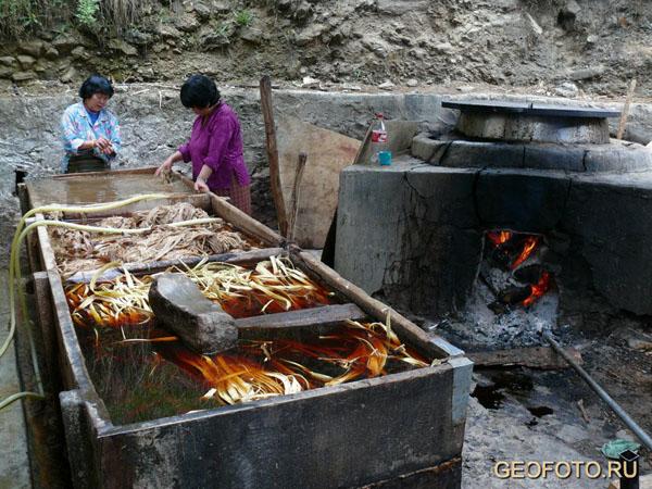 Начальный этап изготовления бумаги / Фото из Бутана