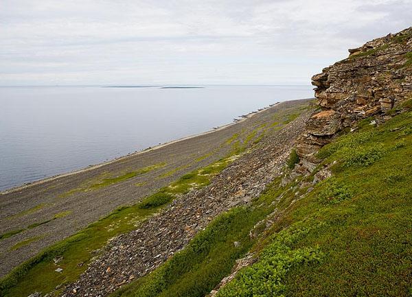 Полуостров Средний, высота 113 метров / Фото из России