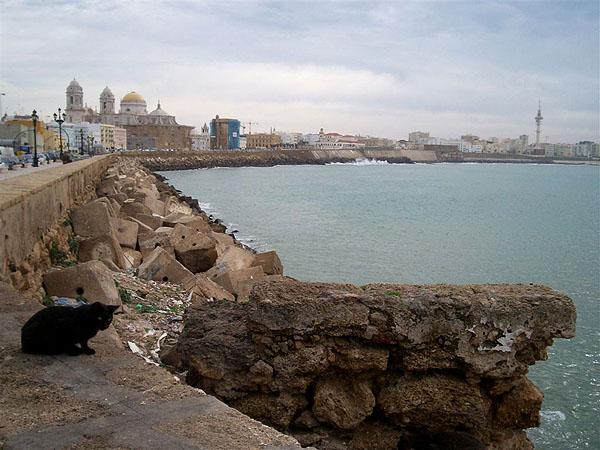 Кадис - крупнейший порт испанского атлантического побережья / Фото из Марокко