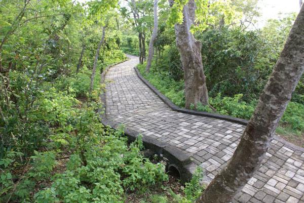 Тропинки в парке возле храма Улу-Вату / Фото из Малайзии