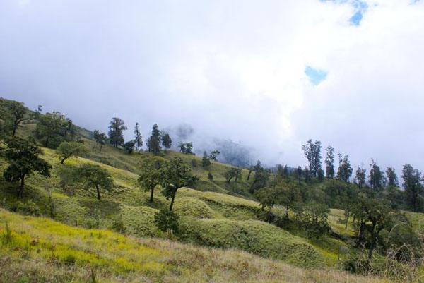Задевая облака... / Фото из Малайзии