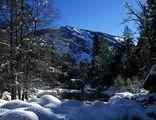 """Национальный парк """"Yosemite"""" / США"""