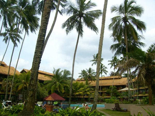 Курорты ждут гостей, Шри-Ланка / Фото со Шри-Ланки
