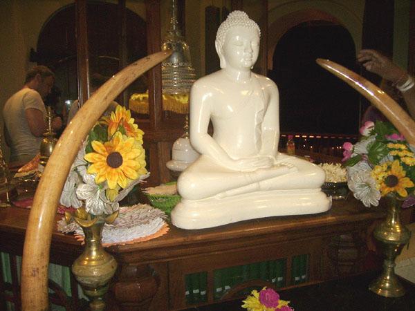 В храме Далада-Малигава (Священного Зуба Будды)  / Фото со Шри-Ланки