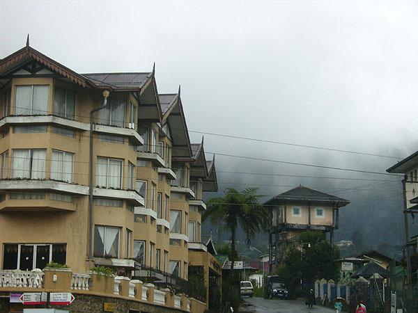 Почти круглый год здесь - дожди и туманы / Фото со Шри-Ланки
