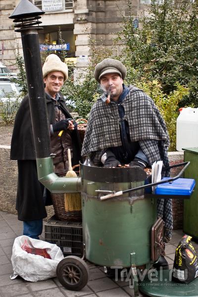 Продавцы каштанов, Будапешт / Фото из Венгрии