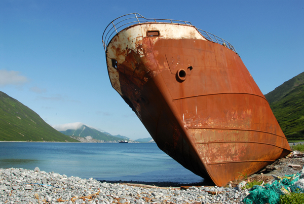 Бухта Моржовая, полуостров Камчатка / Фото из России