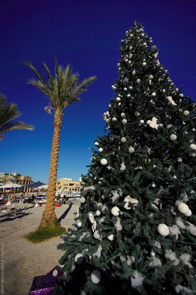 Новогодняя елка в Эль-Гуне / Фото из Египта