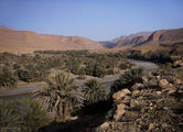 пальмовый оазис в южном Марокко / Марокко