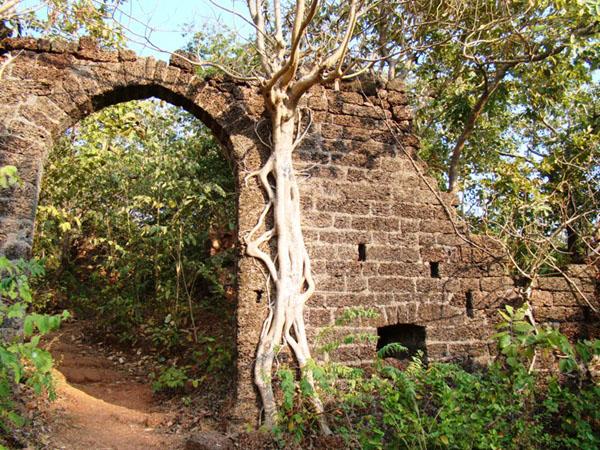 Cтаринный Рэди-форт, Гоа / Фото из Индии
