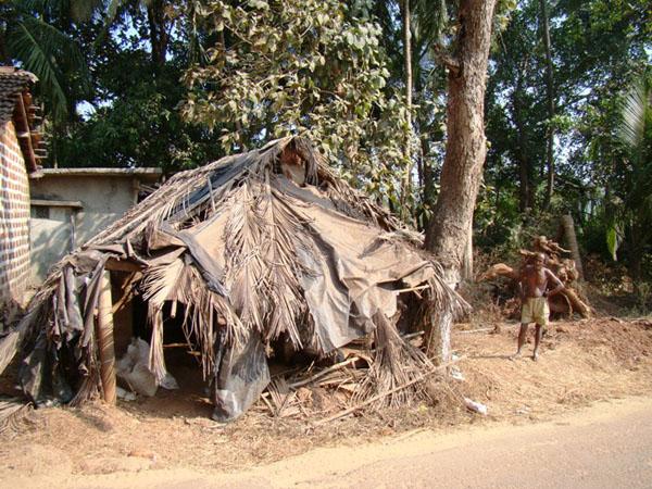 """Один из """"домов"""", Индия / Фото из Индии"""