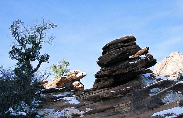 Природная скульптура из песчаника на тропе Canyon Overlook / Фото из США