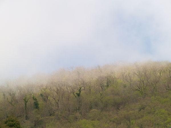 Подъем на Иверскую гору, Новый Афон / Фото из Абхазии