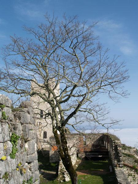 Анакопийская крепость над облаками, Новый Афон / Фото из Абхазии