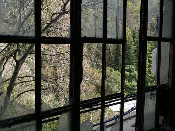 Вид из разрушенного здания / Фото из Абхазии