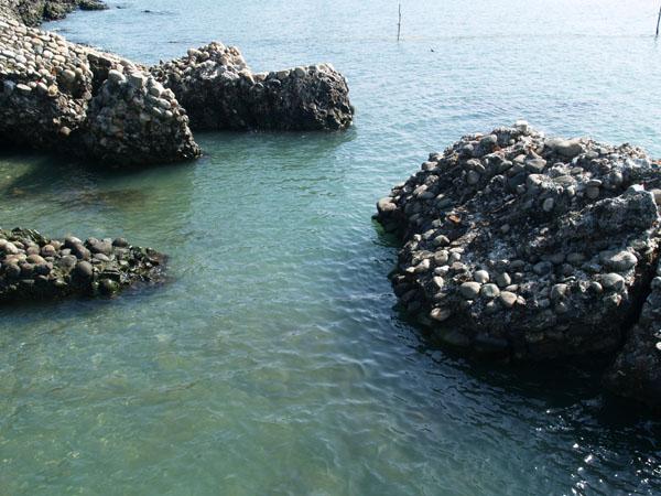 Стены Диоскурии уходят под воду / Фото из Абхазии