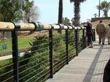 Мост желаний / Израиль
