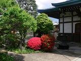 Абсолютная тишина и спокойствие / Япония