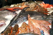 Seafood Show / Бельгия