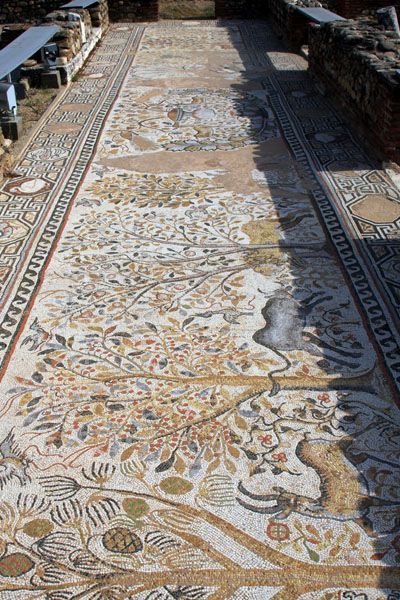 Напольные мозаики в древнем театре Гераклеи, Битола / Фото из Македонии