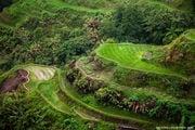 Терраса вблизи / Филиппины