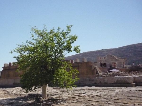 Кносский дворец - величайший памятник минойской цивилизации / Фото из Греции