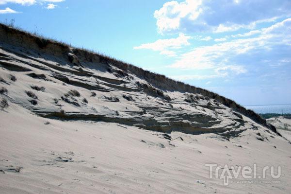 Тени на песке Куршской косы / Фото из Литвы