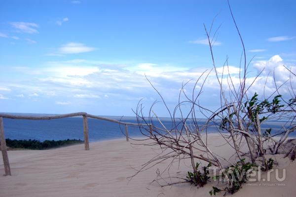 Вид на море с вершины дюны / Фото из Литвы