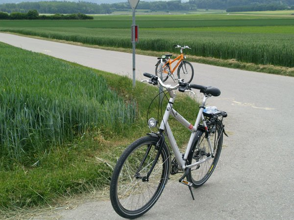 Спортивные велосипеды - самые популярные / Фото из Швейцарии