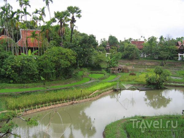 Чиангмай для туристов, отель Mandarin Oriental / Фото из Таиланда